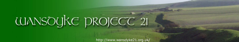 WANSDYKE PROJECT 21